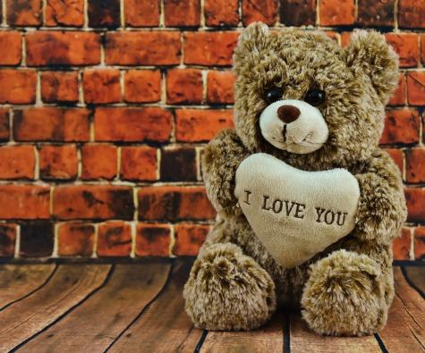 teddy-2061222_1920