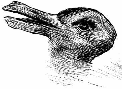 duck bunny drawing.jpg